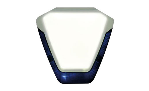 orisec D-Lux Backlight